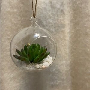 Accents - Succulent ornament